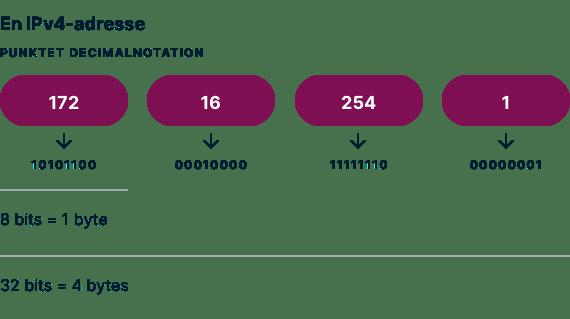 Et eksempel på IPv4-adresse prikket decimalnotation.