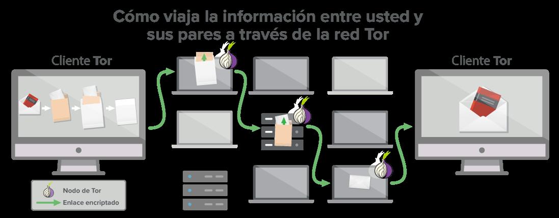 """Una red Tor ofrece al menos tres """"saltos"""" por los cuales viajan sus datos."""