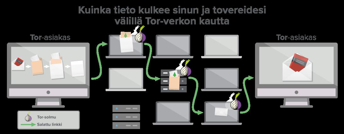 Tor-verkko tarjoaa vähintään kolme hyppyä tietojen kulkemiseen.