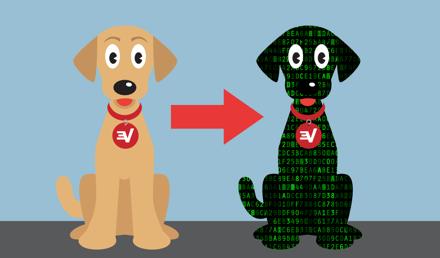 ExpressVPN DNS er beskyttet med topklasses kryptering.