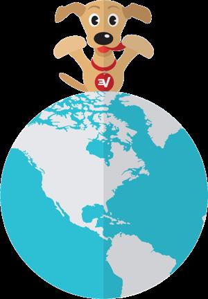 ExpressVPN uruchamia własny DNS na każdym serwerze.