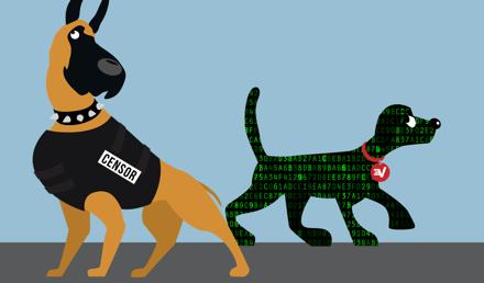 Les requêtes DNS d'ExpressVPN sont chiffrées, ce qui les protège de la censure.
