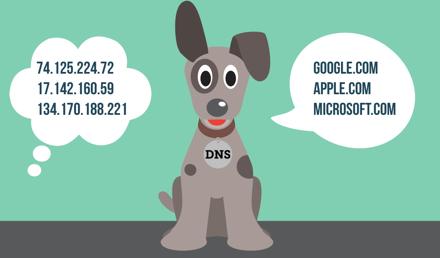 DNS to sposób, w jaki Twoje urządzenie tłumaczy adresy URL na adresy IP.