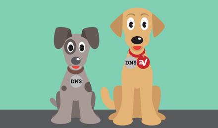 ExpressVPN jest usługą VPN z własnym prywatnym DNS.