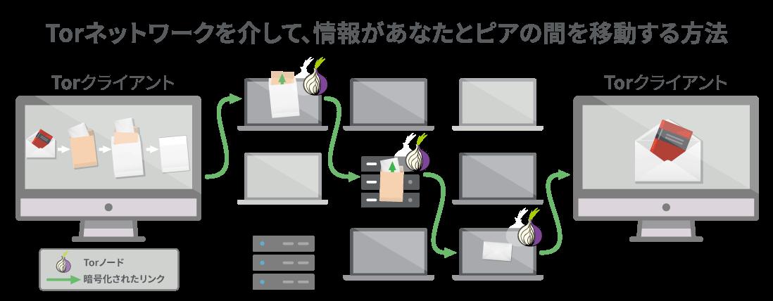 Torネットワークは、データが通過するための少なくとも 3 つのステップを提供します。