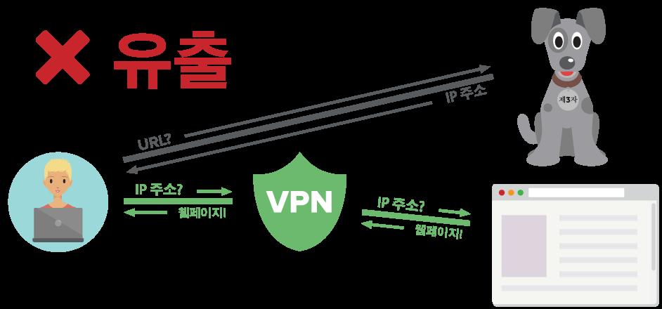 암호화된 터널 외부로 DNS 쿼리를 전송하는 VPN 사용자