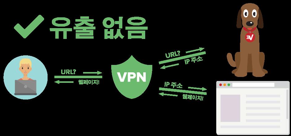 DNS 유출로부터 보호받는 VPN 사용자를 보여주는 도표