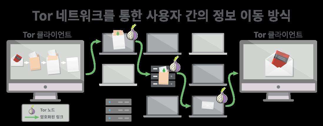 Tor 네트워크는 데이터가 통과할 홉을 세 개 이상 제공합니다.