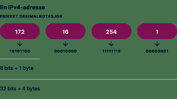 Et eksempel på en IPv4-adresse som stiplet desimalnotasjon.