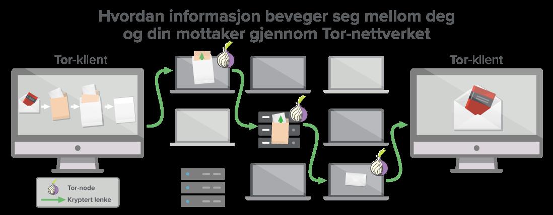 Et Tor-nettverk har minst tre noder som dataene dine beveger seg gjennom.