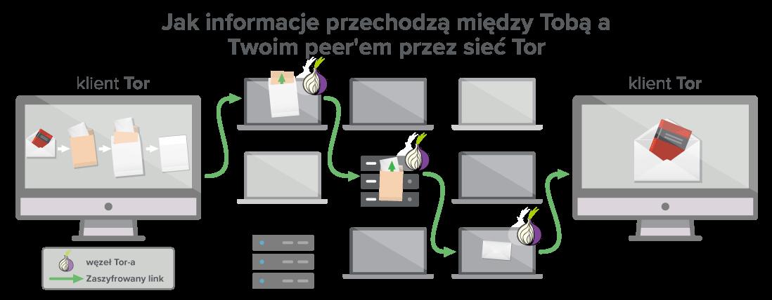 Sieć Tor posiada przynajmniej trzy węzły, przez które przedostają się Twoje dane.