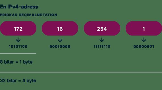 Ett exempel på en IPv4-adress med prickad decimalnotation.