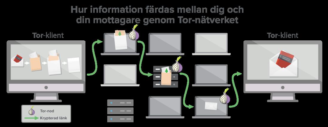 Ett Tor-nätverk leder din data genom minst tre knutpunkter.